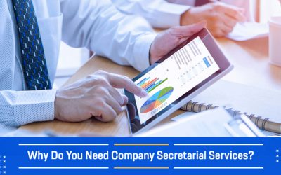 Why Do You Need Company Secretarial Services